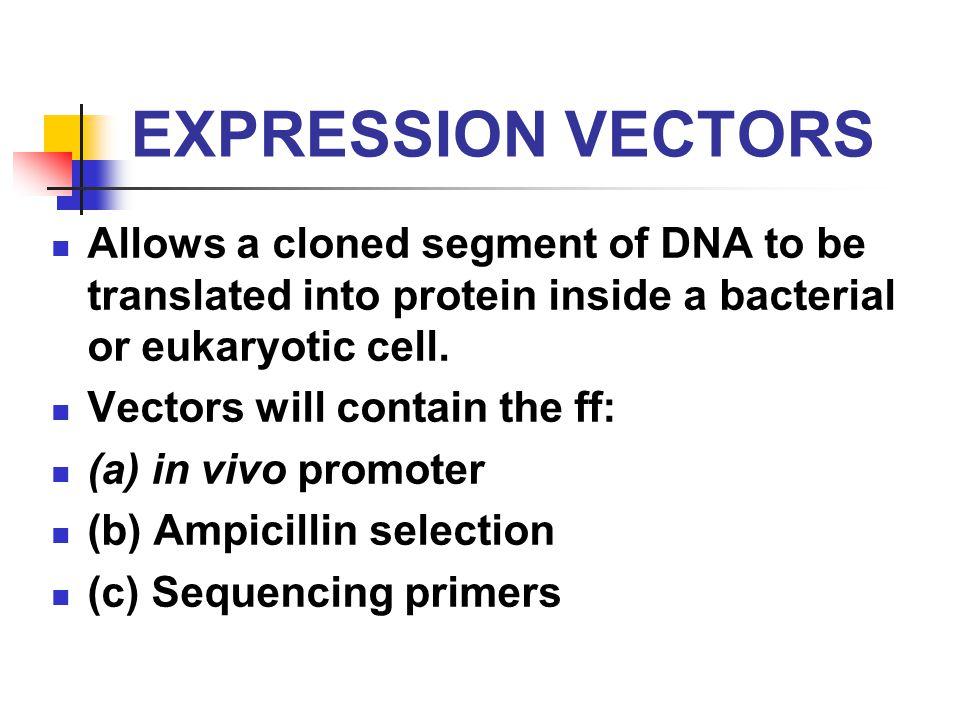 principles of cloning  vectors and cloning strategies