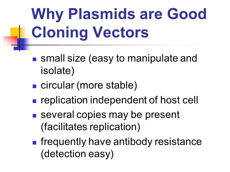 cloning history types of cloning and controversies associated with it Animal cloning is defined in technical terms as a means of asexual reproduction where a single cell in made to grow into an animal genetically identical to the animal that donated the cell (weiss, a-16) human cloning is basically the same, yet there are more complications associated with it.