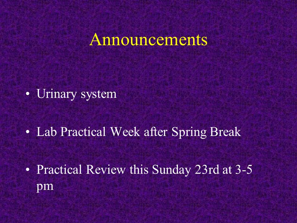 Announcements Urinary system Lab Practical Week after Spring Break