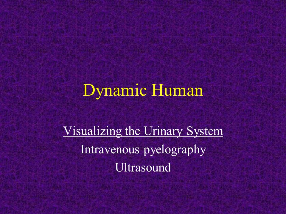 Visualizing the Urinary System Intravenous pyelography Ultrasound