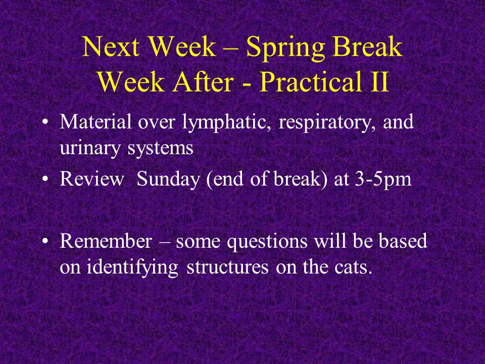 Next Week – Spring Break Week After - Practical II