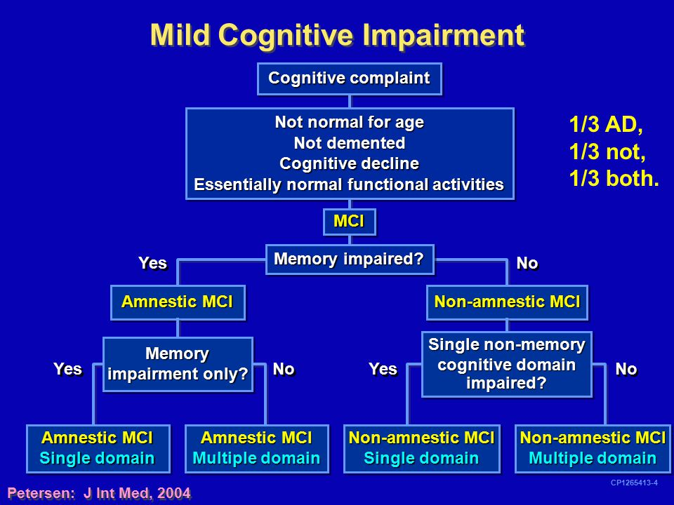 Mild Cognitive Impairment Essentially normal functional activities