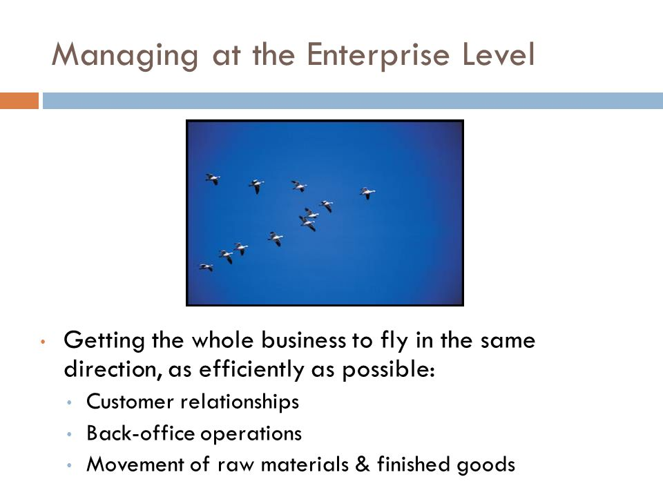 Managing at the Enterprise Level