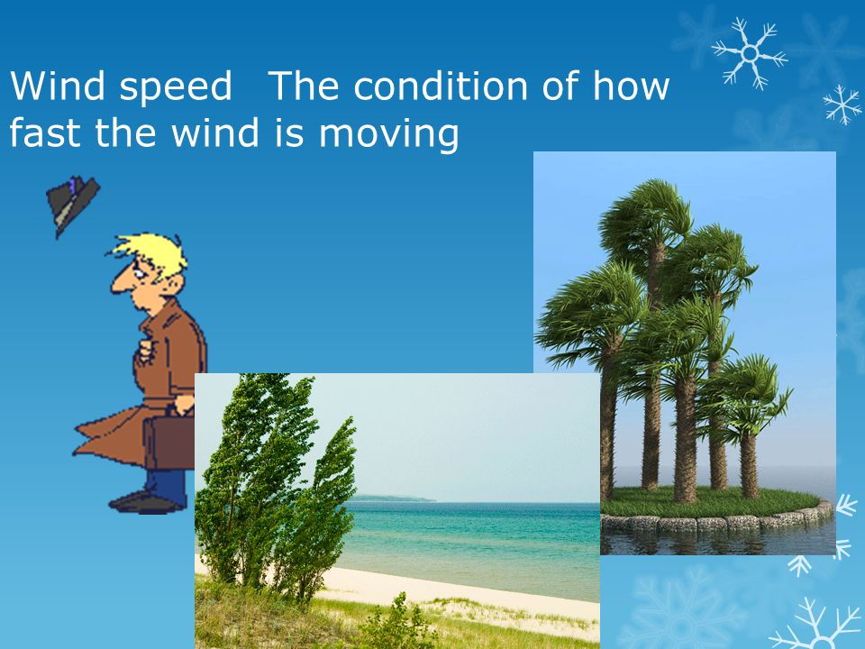 Wind speed The condition of how fast the wind is moving
