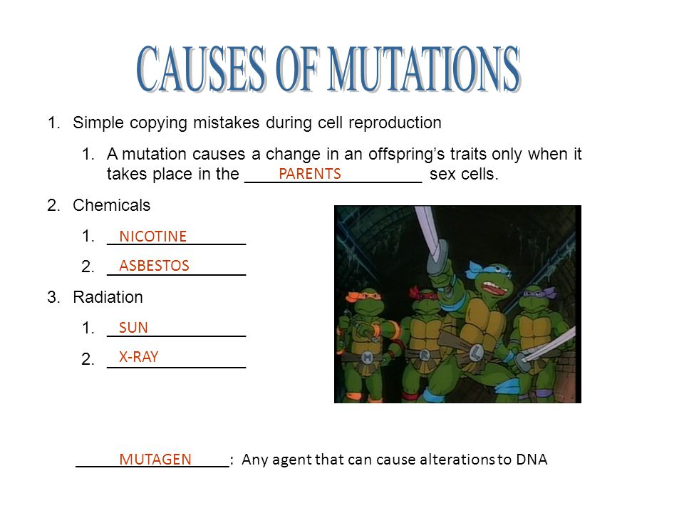 how to tell if a mutation is harmful or not
