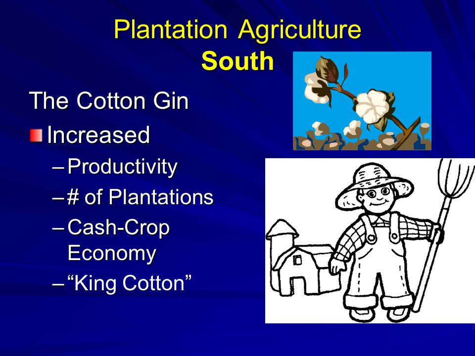 Plantation Agriculture South