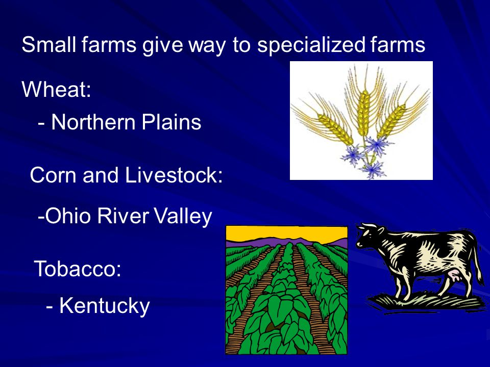 Small farms give way to specialized farms