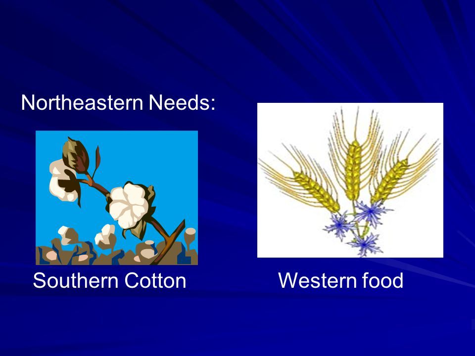 Northeastern Needs: Southern Cotton Western food
