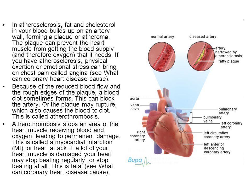 In atherosclerosis, fat and cholesterol in your blood builds up on an artery wall, forming a plaque or atheroma. The plaque can prevent the heart muscle from getting the blood supply (and therefore oxygen) that it needs. If you have atherosclerosis, physical exertion or emotional stress can bring on chest pain called angina (see What can coronary heart disease cause).