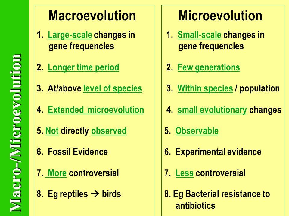 example of macroevolution