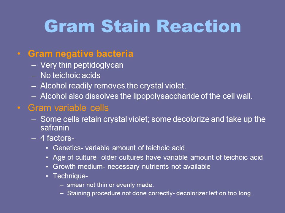 Ultrastructure of bacterial cell form and function ppt video gram stain reaction gram negative bacteria gram variable cells ccuart Images