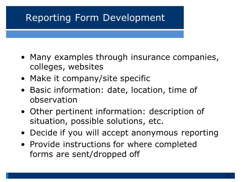 Reporting Form Development