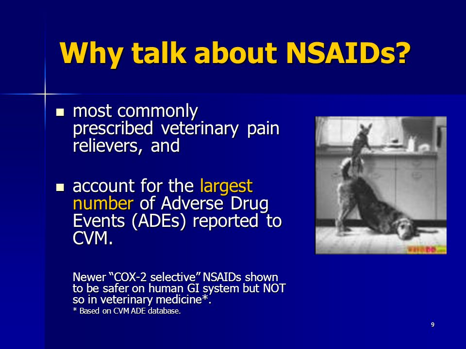 Cox  Nsaids For Dogs