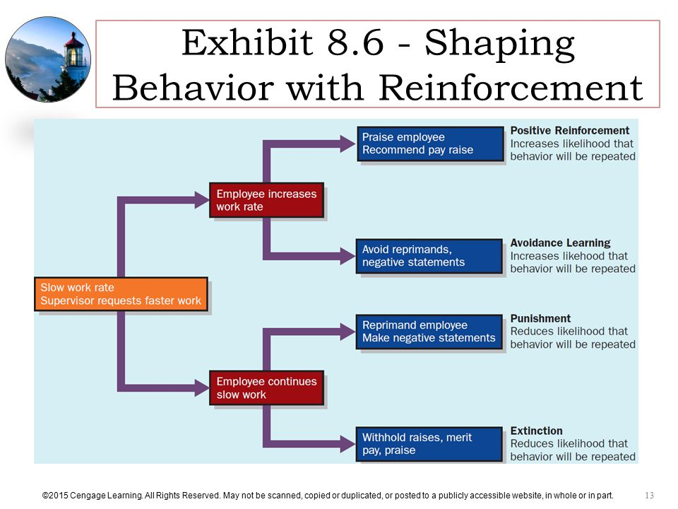 Exhibit Shaping Behavior with Reinforcement