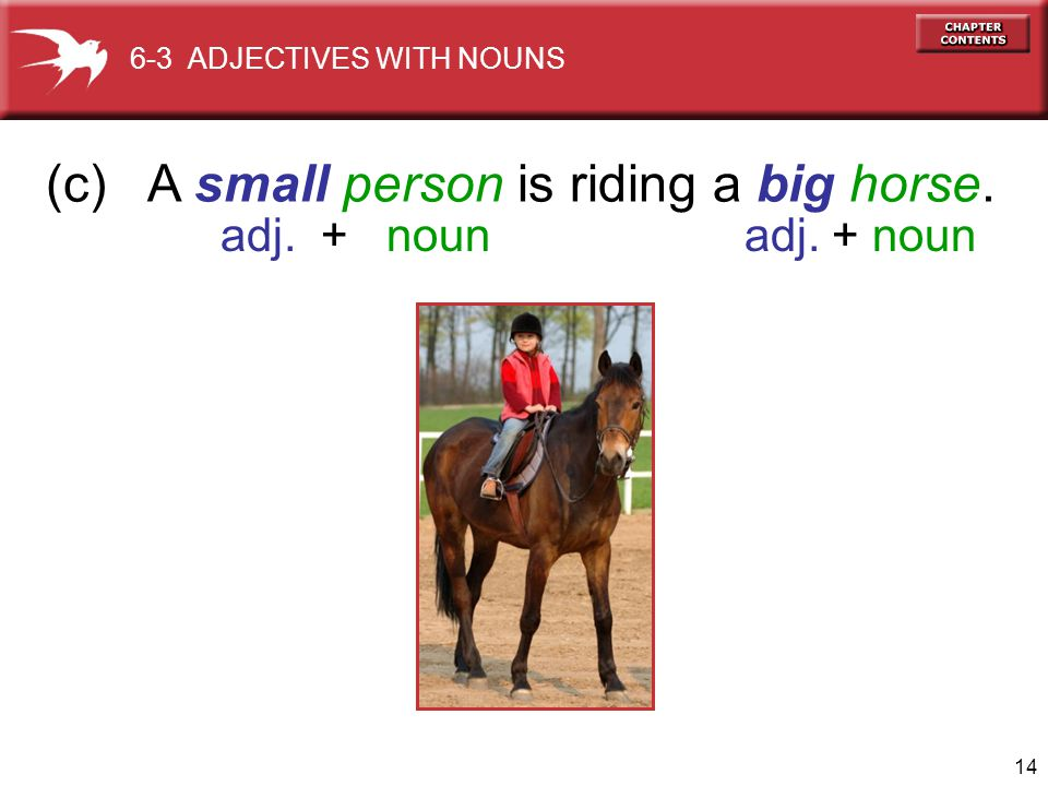 (c) A small person is riding a big horse.