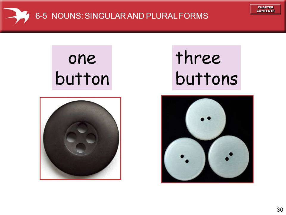 6-5 NOUNS: SINGULAR AND PLURAL FORMS