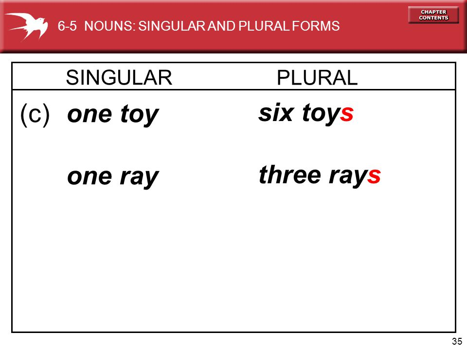 (c) one toy one ray six toy three ray s s SINGULAR PLURAL