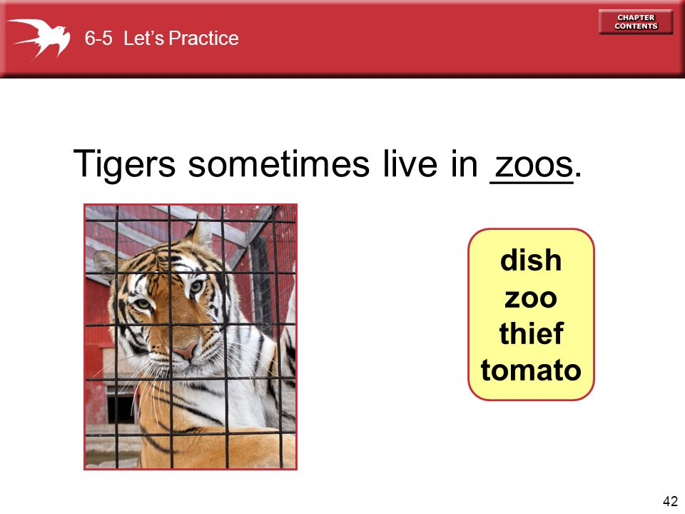 Tigers sometimes live in ____. zoos