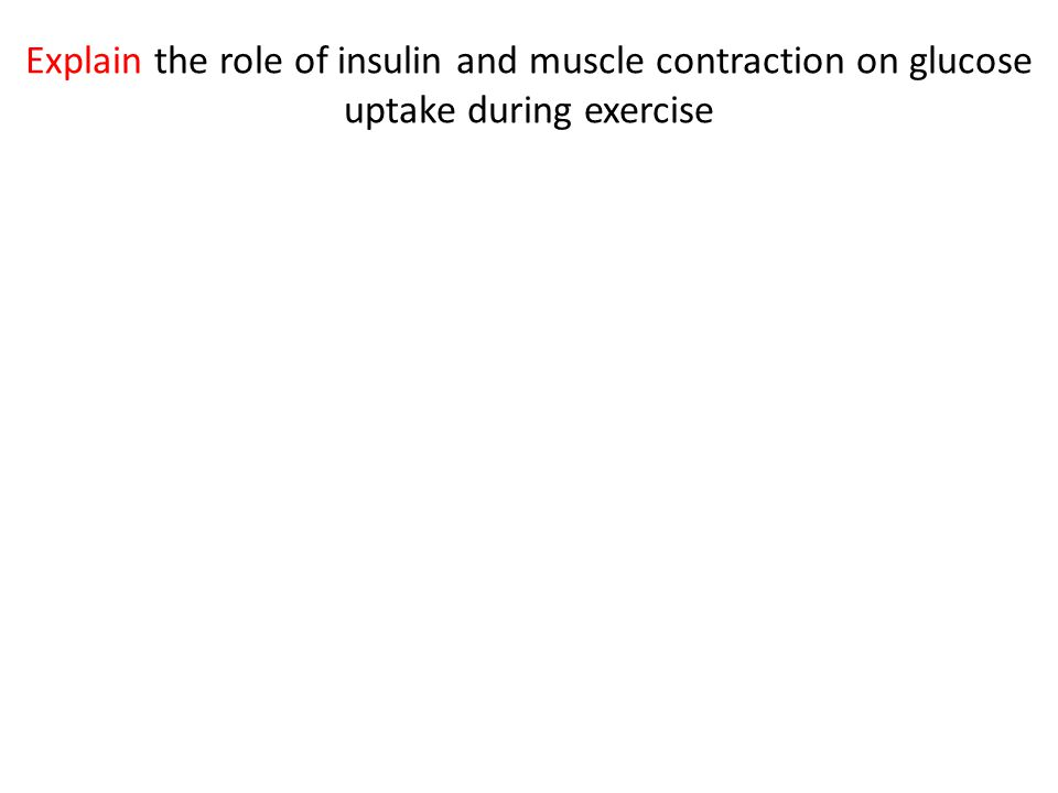 Explain the role of insulin and muscle contraction on glucose uptake during exercise