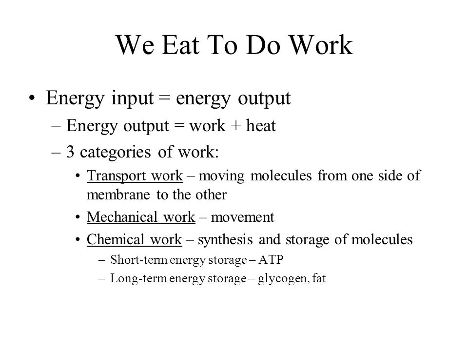 We Eat To Do Work Energy input = energy output