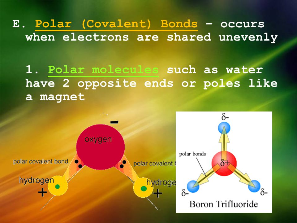 E. Polar (Covalent) Bonds – occurs when electrons are shared unevenly 1.