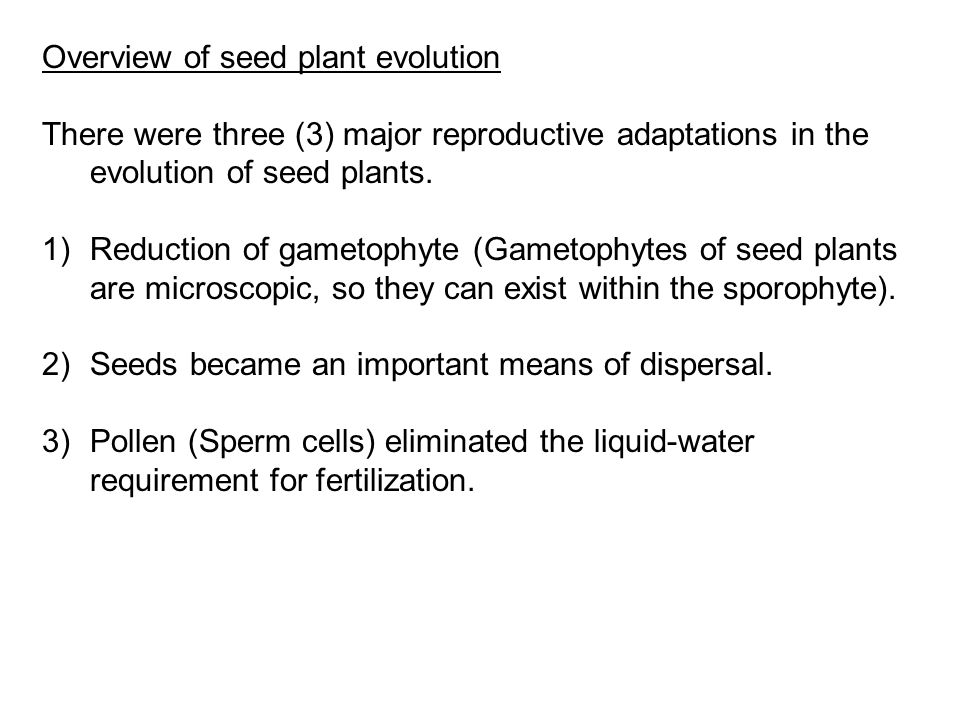 Overview of seed plant evolution