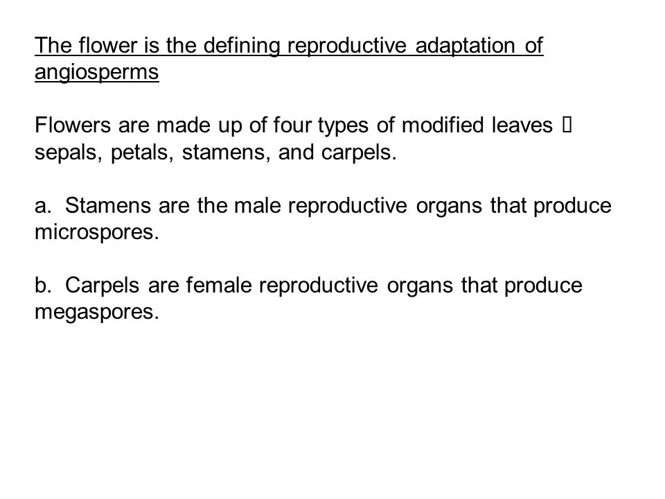 The flower is the defining reproductive adaptation of angiosperms