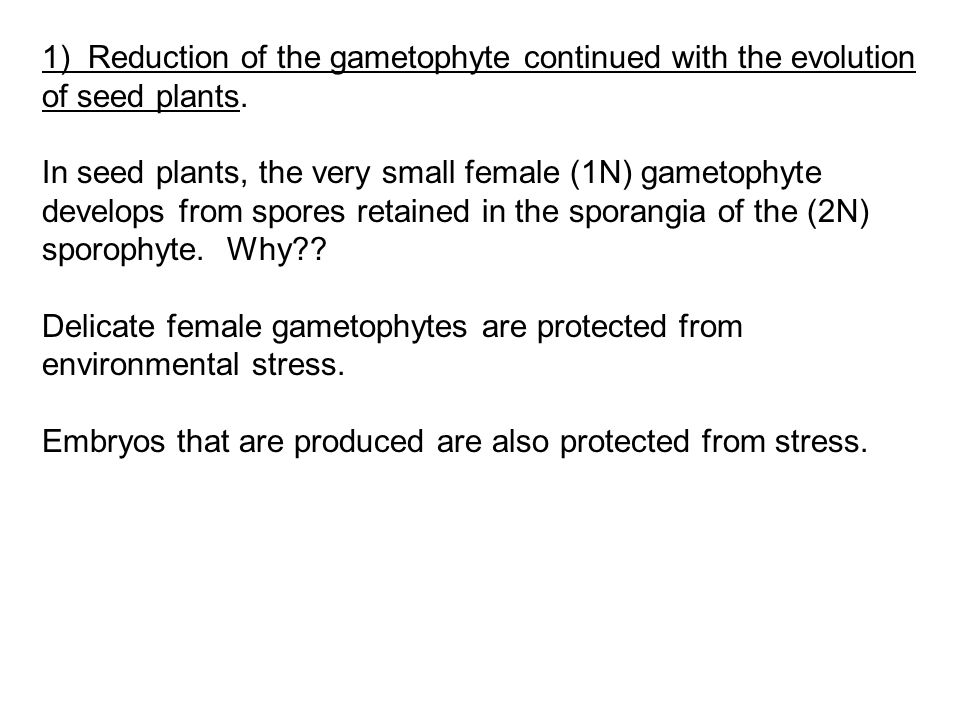 1) Reduction of the gametophyte continued with the evolution of seed plants.