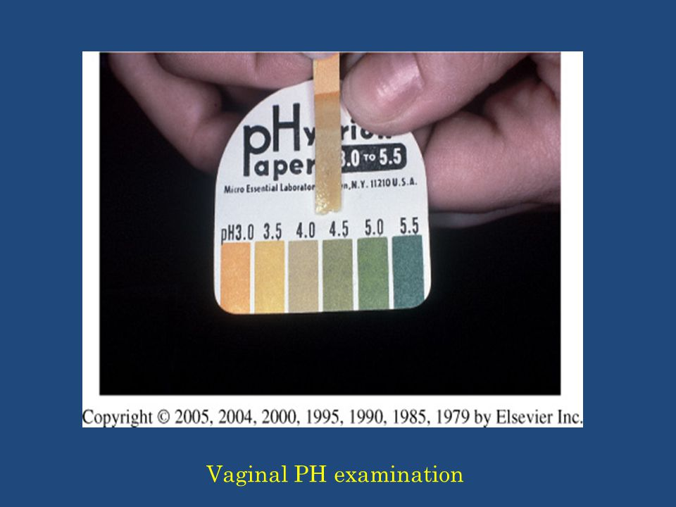 Impact Of Sexual Intercourse On Vaginal Ph