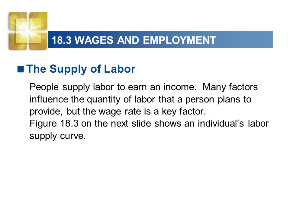 The Supply of Labor 18.3 WAGES AND EMPLOYMENT