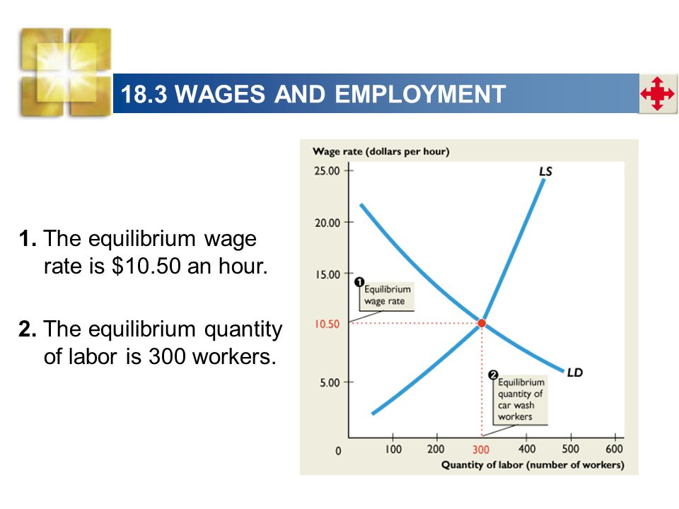 18.3 WAGES AND EMPLOYMENT 1. The equilibrium wage rate is $10.50 an hour.