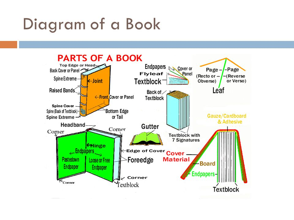 Diagram+of+a+Book dissecting the book kelley walker perry ppt download