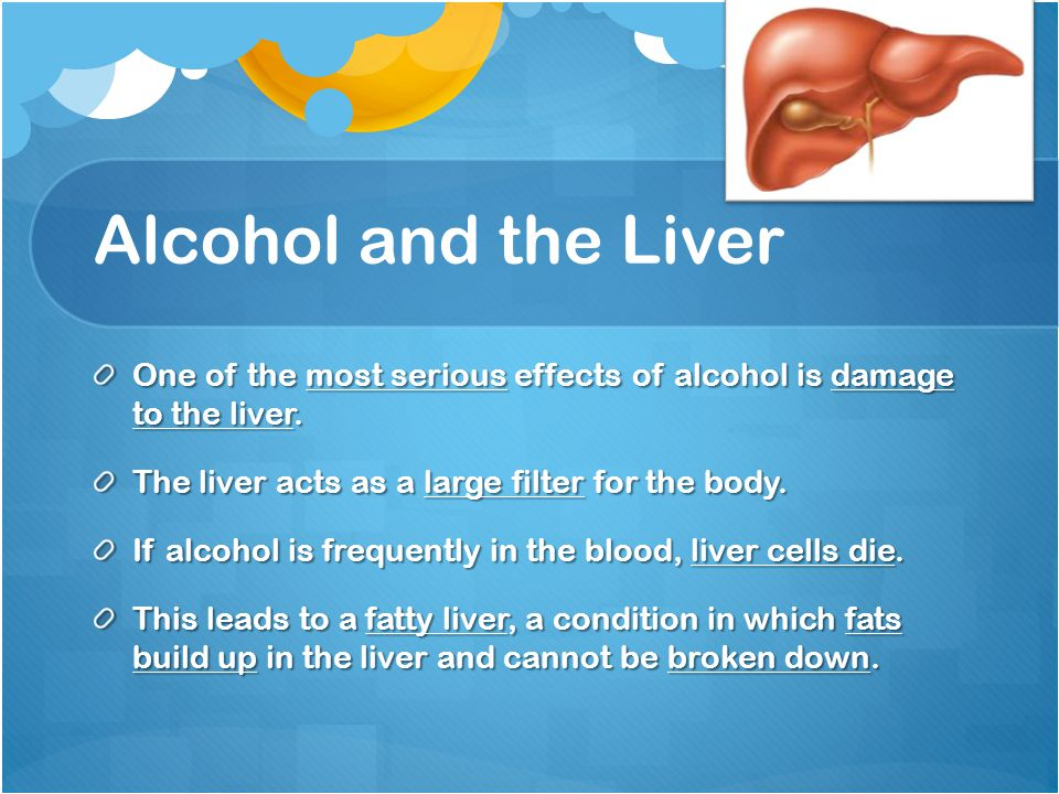 Alcohol and the Liver One of the most serious effects of alcohol is damage to the liver. The liver acts as a large filter for the body.