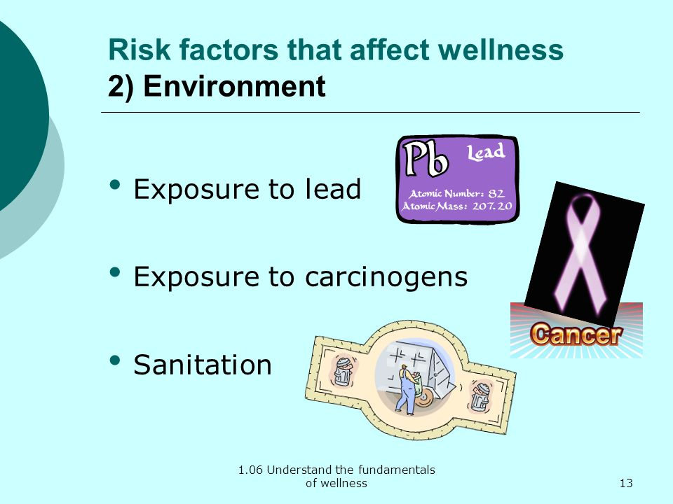 Risk factors that affect wellness 2) Environment