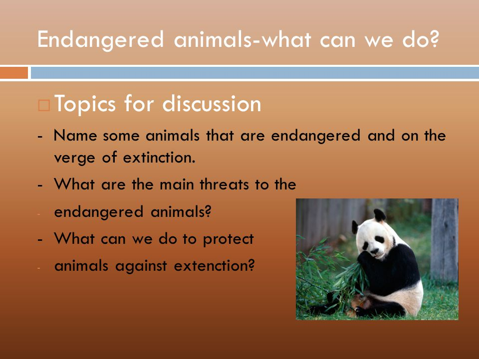 endangered species essay topic Included: environment essay opinion essay content preview text: poaching is the illegal hunting, capture, or collecting of wildlife although it is illegal, animal poaching is a serious problem all over the world, especially for the endangered species poaching is a major problem in all six inhabited.