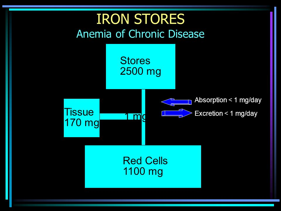 IRON STORES Anemia of Chronic Disease