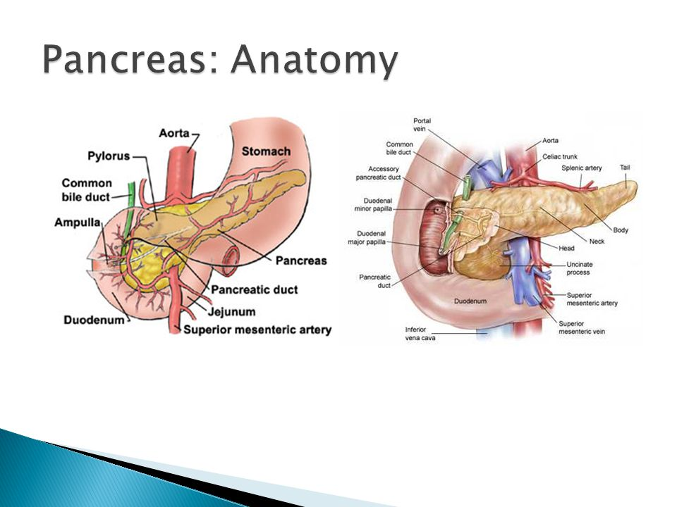 Mohammad mobasheri SpR General Surgery - ppt video online download