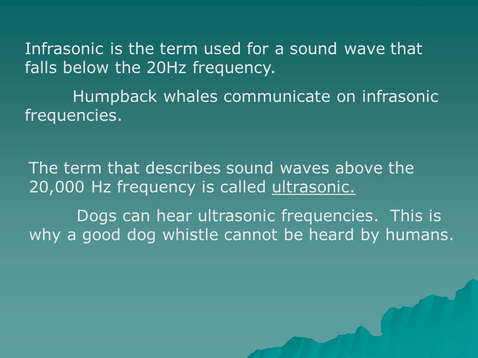 Infrasonic is the term used for a sound wave that falls below the 20Hz frequency.