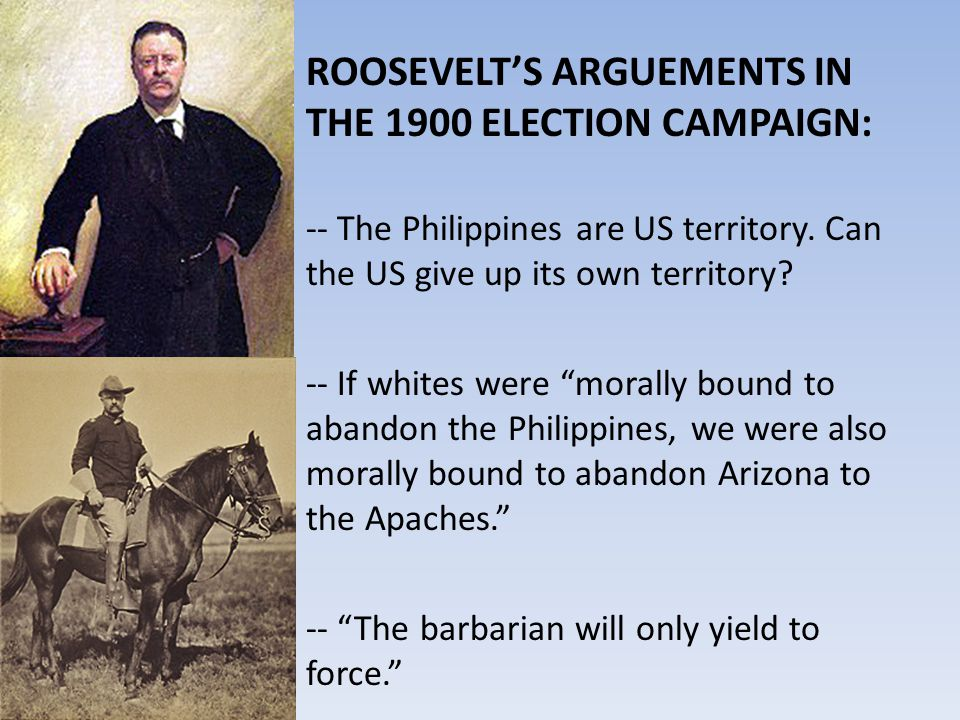 ROOSEVELT'S ARGUEMENTS IN THE 1900 ELECTION CAMPAIGN: