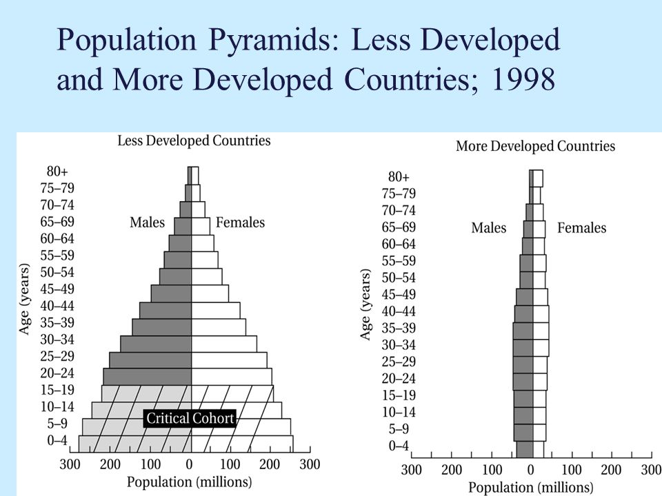 Population Pyramids: Less Developed and More Developed Countries; 1998