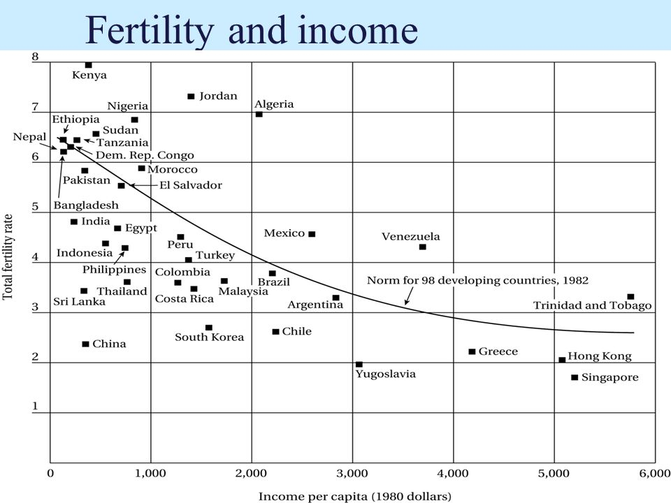 Fertility and income