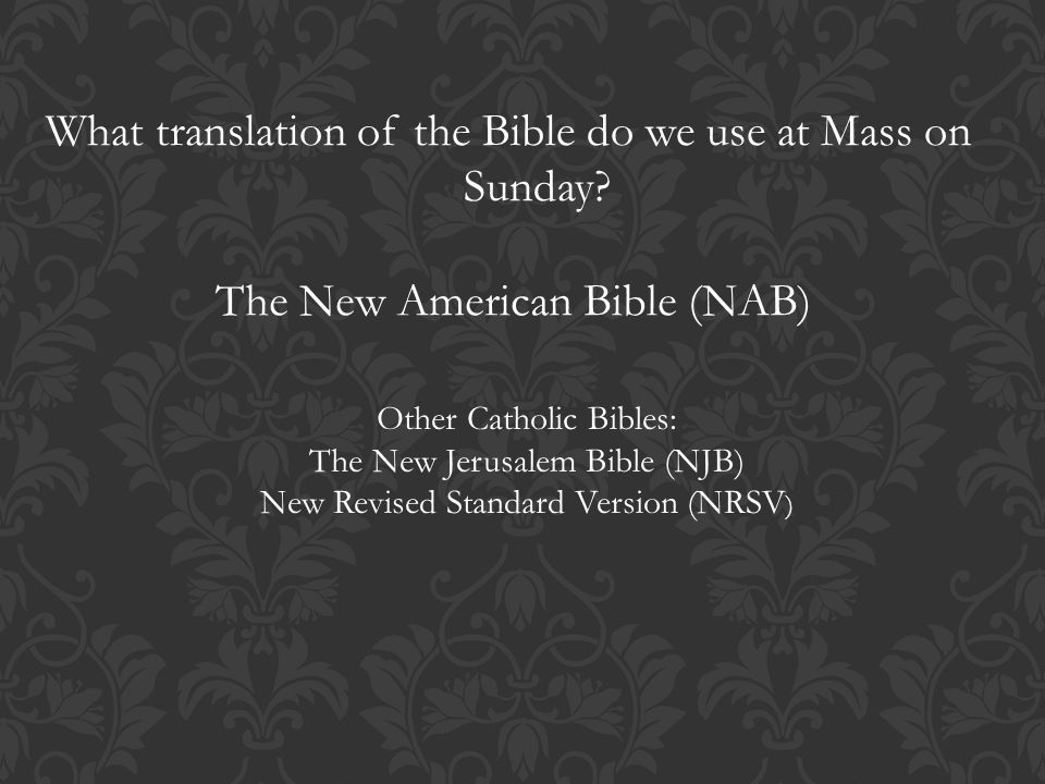The bible taken from the bible blueprint a catholics guide to what translation of the bible do we use at mass on sunday malvernweather Gallery