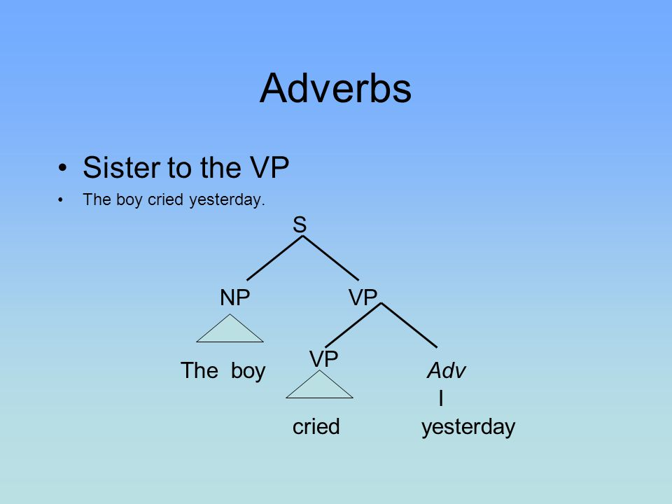 Adverbs Sister to the VP S NP VP VP The boy Adv I cried yesterday