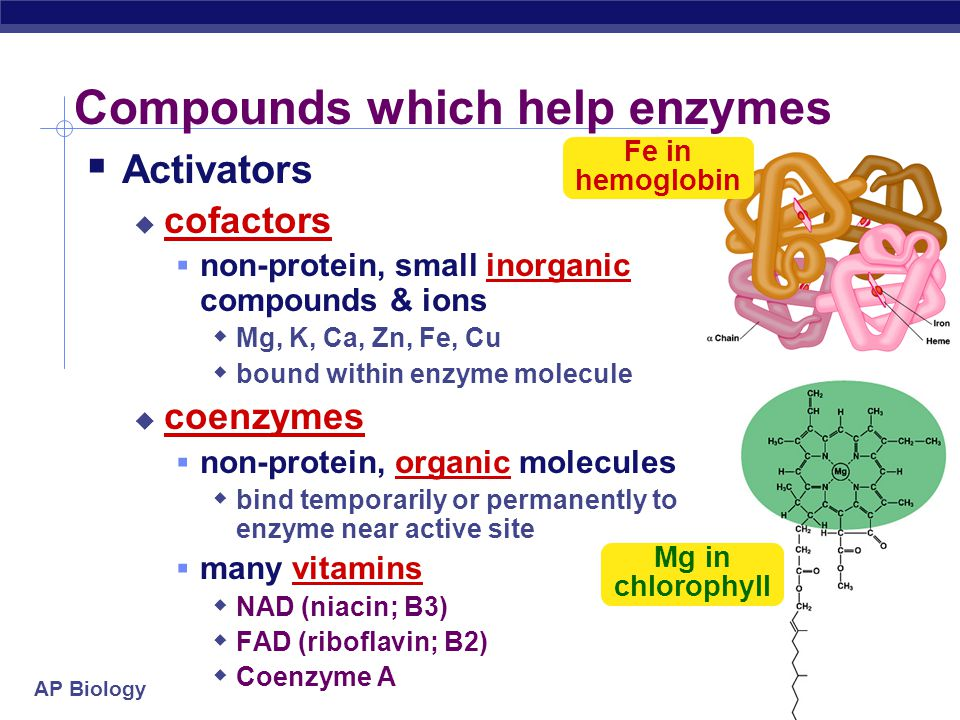 Compounds which help enzymes