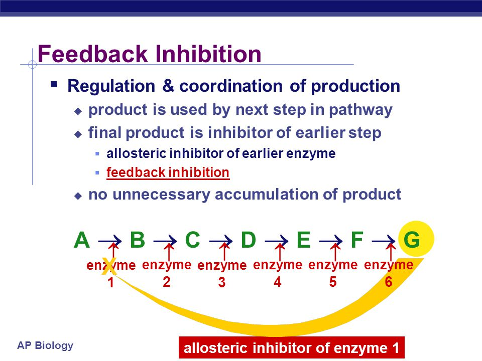 allosteric inhibitor of enzyme 1