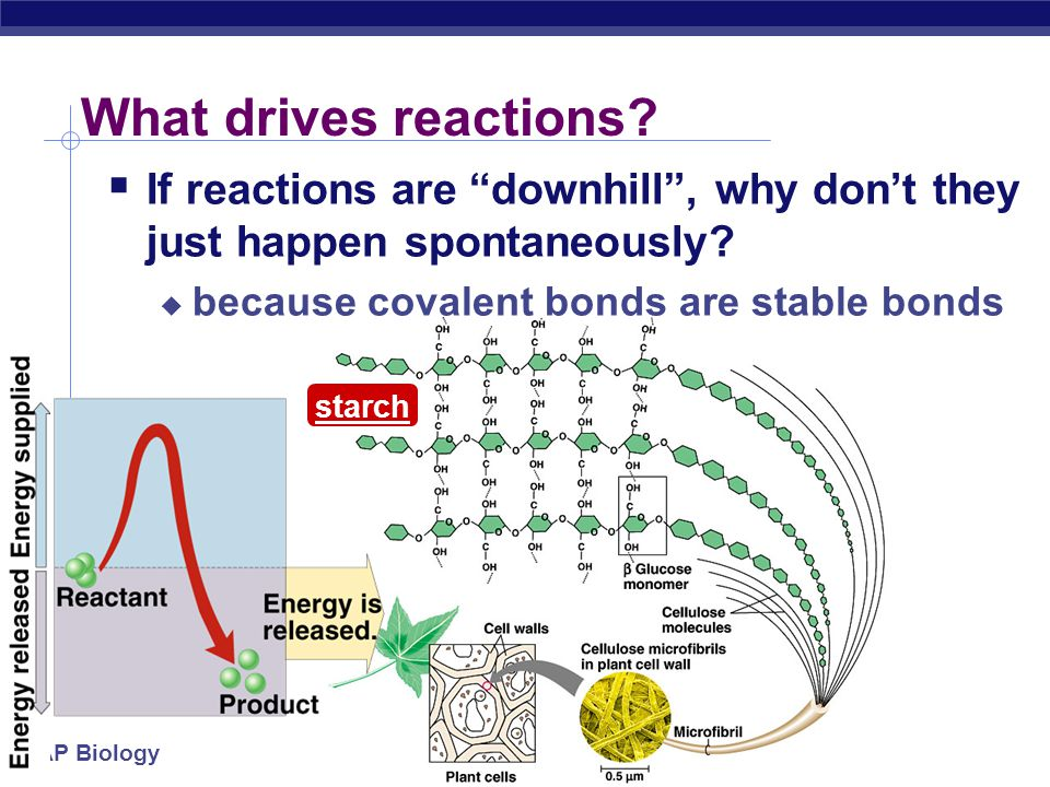 What drives reactions If reactions are downhill , why don't they just happen spontaneously because covalent bonds are stable bonds.