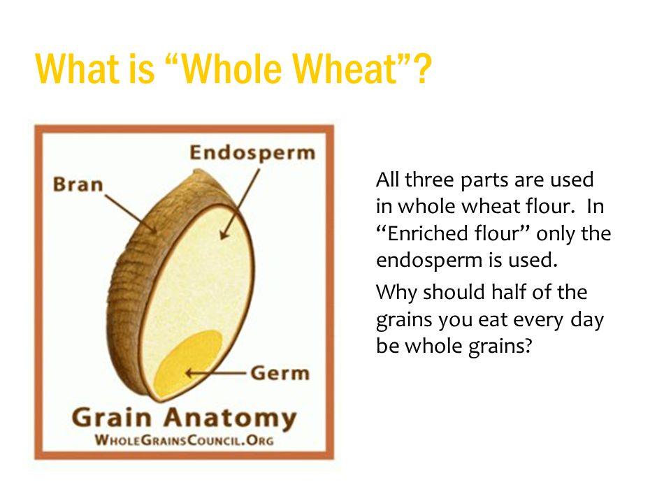 Idaho Wheat Teacher Script: - ppt download