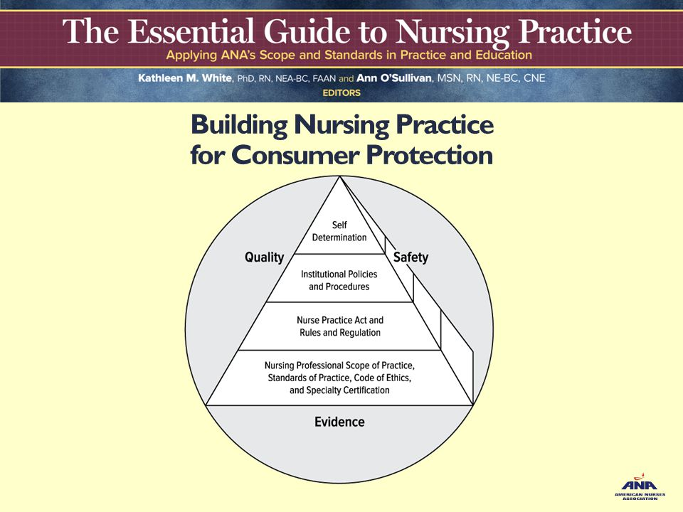 process for developing nursing standards of practice