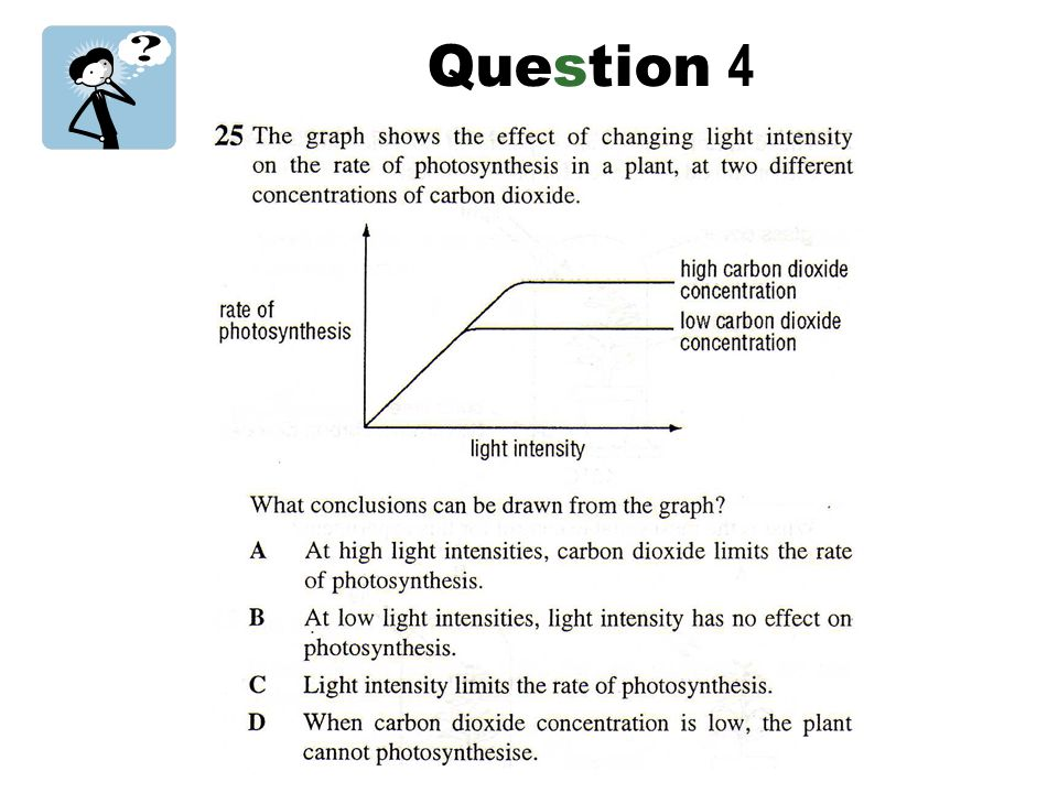 how do abiotic factors influence the rate of photosynthesis The basics of photosynthesis without photosynthesis, life as we know it would not be possible plants, including aquatic plants, produce oxygen, and they also use oxygen here's how these several days of cloudy weather can slow the rate of photosynthesis, resulting in lower oxygen.