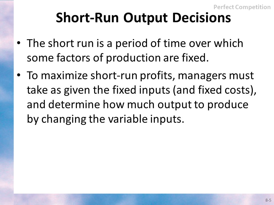 Short-Run Output Decisions
